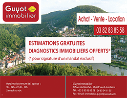 guyotimmobilier